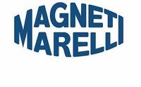 Ondersteuning voor 2012-2013 Magneti Marelli systemen